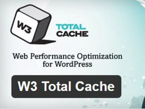 Plugin WordPress Terbaik - W3 Total Cache